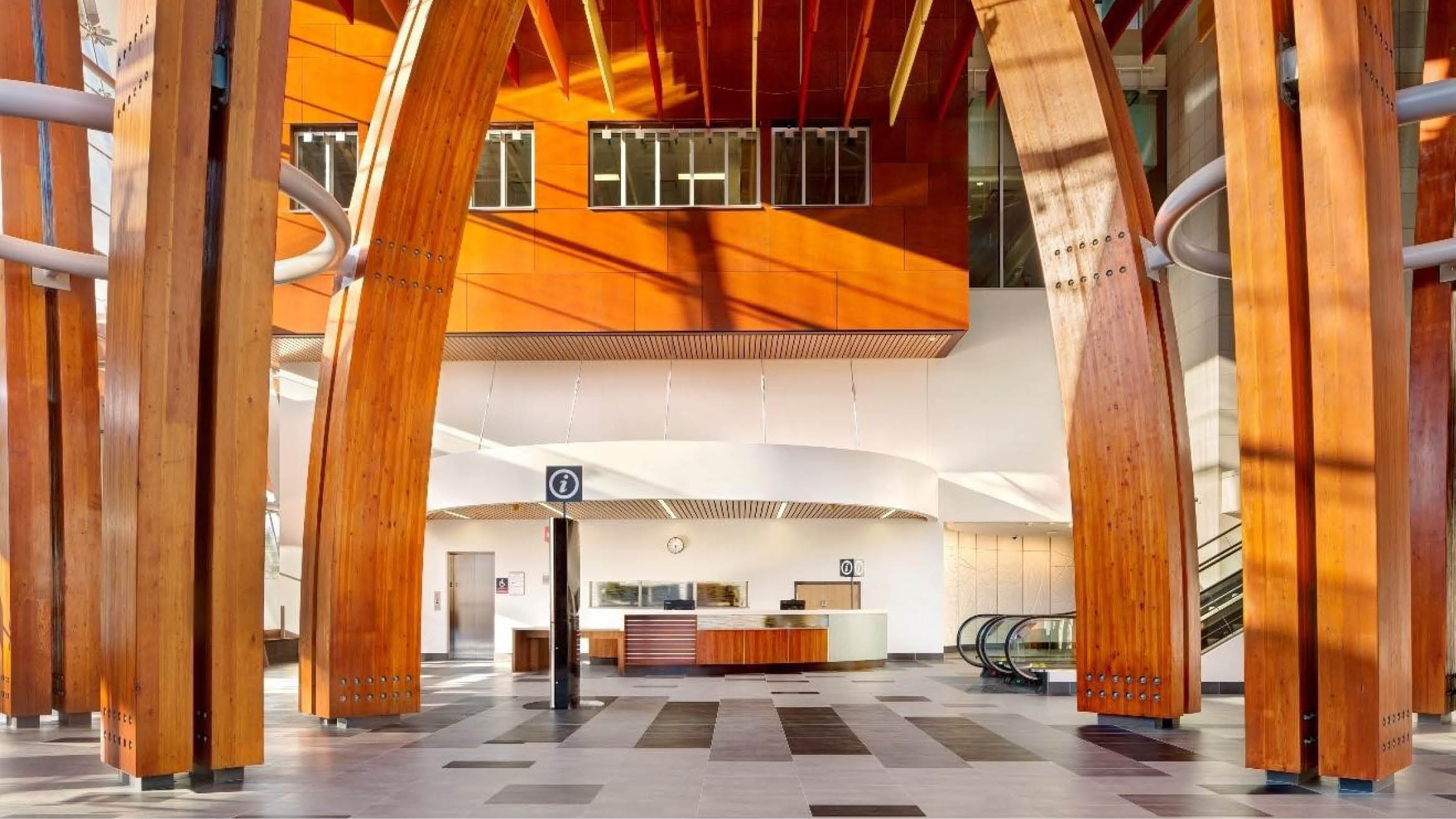 """Featured image for """"Timber Tonic: How Wood and Natural Materials Can Transform Healthcare Facility Design"""""""